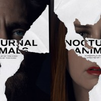 nocturnal-animals-1200x640